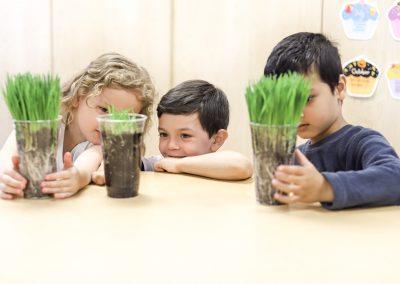 preschool science 1